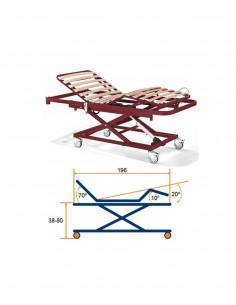 Cama articulada con barandilla , carro con ruedas y colchón.